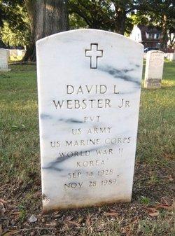 David L. Webster