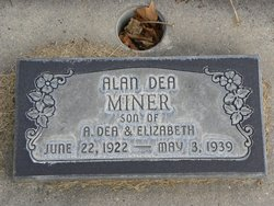 Alen D Miner