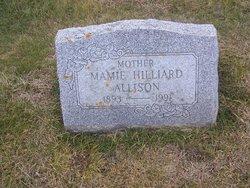 Mamie Lillian <I>Fishang</I> Allison