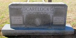 Estelle S Carelock