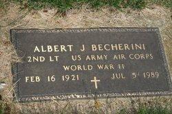 Albert J Becherini