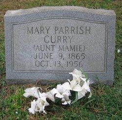 "Mary Ann ""Aunt Mamie"" <I>Parrish</I> Curry"