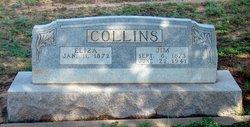 Eliza <I>Hall</I> Collins