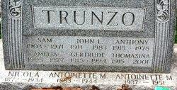 Anthony Joseph Trunzo, Sr