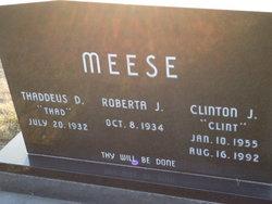 "Clinton James ""Clint"" Meese"