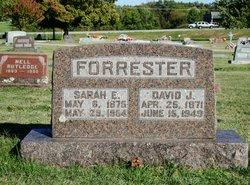 David Jasper Forrester