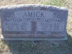 Beverly Ann Amick