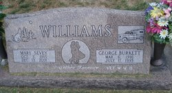 George B Williams