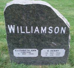 Errol Derry Williamson