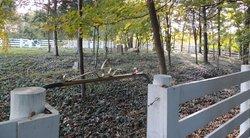 Montgomery Cemetery #2
