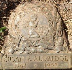 Susan Elizabeth Aldridge