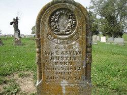Mary D. Austin