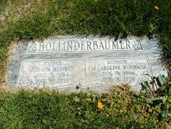 Johann Heinrich Hollinderbaumer