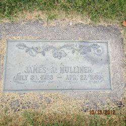 James Andrew Mulliner