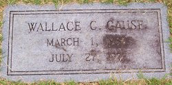 Wallace C Gause