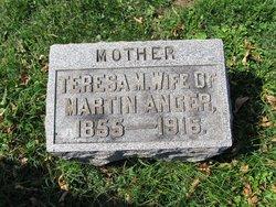 Teresa M. <I>Klein</I> Anger