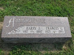 Harry J Ambridge