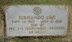 Fernando Luis Fernández