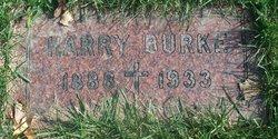 Harry Patrick Burke