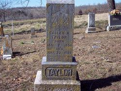 """Sarah Ann """"Salley"""" <I>Ward</I> Taylor"""