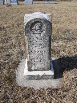 Elizabeth J Adams