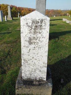 Henry Breese, Jr