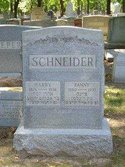 Fanny <I>Rosenfeld</I> Schneider