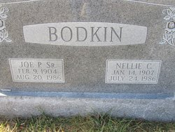 Nellie Cora <I>Painter</I> Bodkin