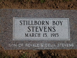 Stillborn Male Stevens