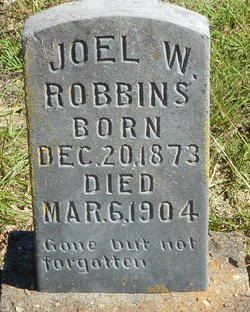 Joel W. Robbins