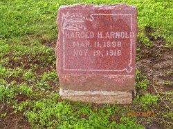 Harold Henry Arnold