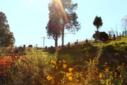 Woods-Spessard Cemetery