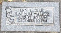 Fern Leslie <I>Labrum</I> Walker
