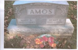 Henry Hudson Amos