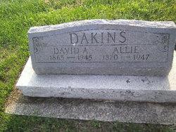David A. Dakins