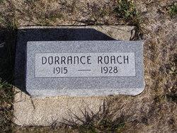 Dorrance Roach