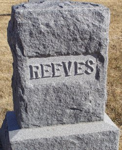 Anna M Reeves