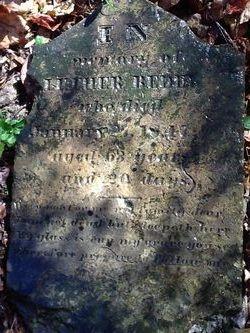 Luther Bedel, Jr