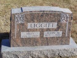 Mary <I>Robson</I> Liggitt