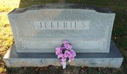 Tura Catherine <I>Davis</I> Jeffries