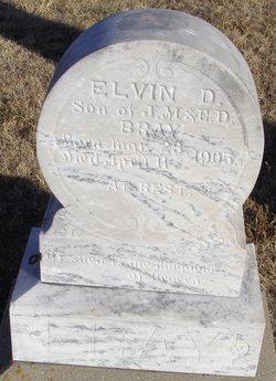 Elvin D Bray