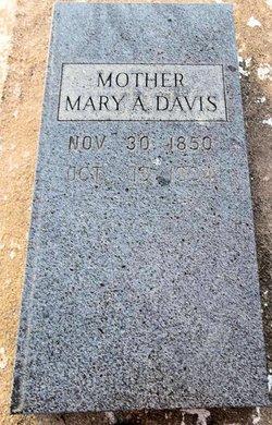Mrs Mary Ann <I>Mapes</I> Davis