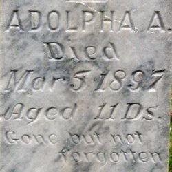 Adolpha A. Anderson