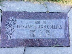 Elizabeth Ann <I>Davies</I> Collins