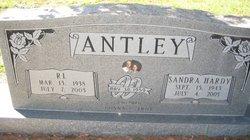 Sandra <I>Hardy</I> Antley