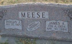 James Adrian Meese, Jr