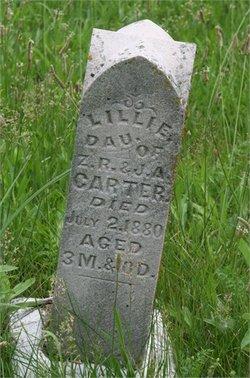 Lillie Carter