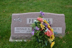 Donald A Perkins