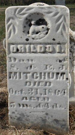 Orildo I. Mitchum