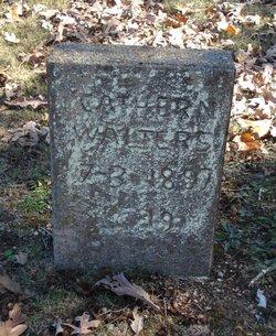 Mary Catherine <I>Sisco</I> Walters